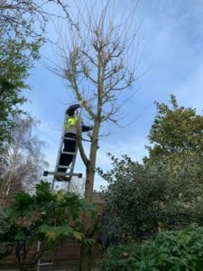 Tree Reduction