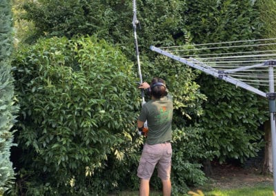 Hedge Trimming in Hempstead